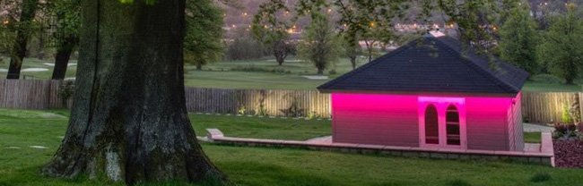 LEDs create summer colours on a night